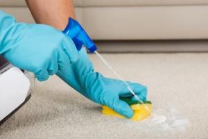Pomocí čeho dosáhneme, že bude koberec vypadat jako nový